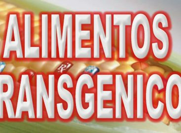 La guerra de los alimentos transgénicos (Documental)