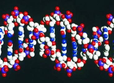 Reino Unido autoriza modificación genética de embriones humanos