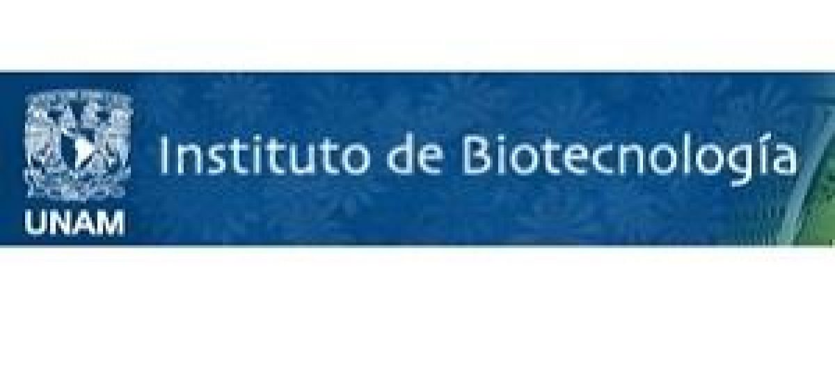 Opposing role of anti-inflammatory molecules in bacterial infections
