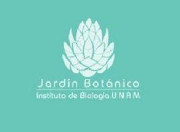 Yoga al aire libre en la UNAM