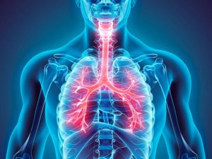 Partículas finas: inmutoxicología en el modelo animal de asma. @ Auditorio Dr. Julián Adem CCA | Ciudad de México | Ciudad de México | México