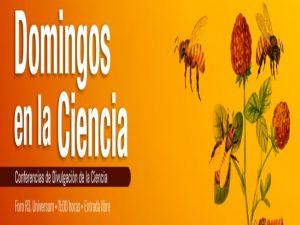 La importancia de las abejas @ Foro R3 | Ciudad de México | Ciudad de México | México
