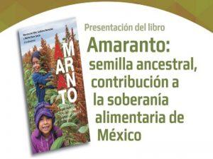 Amaranto: semilla ancestral, contribución a la soberanía alimentaria de México @ Auditorio José Luis Sánchez  Bribiesca, Torre de Ingeniería | Ciudad de México | Ciudad de México | México