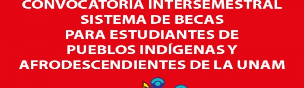 Convocatoria Intersemestral para el Sistema de Becas para Estudiantes de Pueblos Indígenas y Afrodescendientes de la UNAM 2019