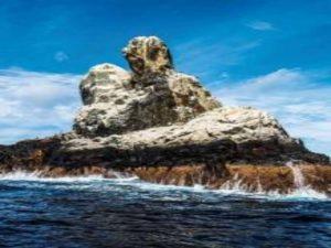 Mar adentro. Ep. 9 Revillagigedo: La última frontera en el Pacífico Mexicano @ Sala Julio Bracho | Ciudad de México | Ciudad de México | México