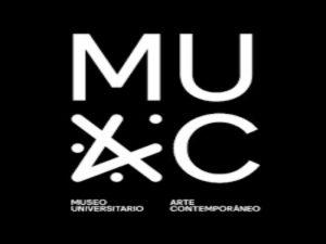 Activación en gabinete de la exposición Jan Hendrix. Tierra Firme @ MUAC, Sala 3. Planta Alta | Ciudad de México | Ciudad de México | México