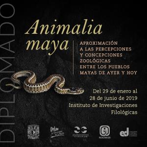 Animalia maya: Aproximación a las percepciones y  concepciones zoológicas entre los pueblos mayas de ayer y hoy @ Sala de Usos Múltiples, Instituto de Investigaciones Filológicas | Coyoacan | Ciudad de México | México