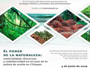 El poder de la naturaleza: materialidad, discursos y subalternidad en el caso de la palma de aceite en Chiapas. @ Auditorio del Instituto de Investigaciones Sociales de la UNAM | Ciudad de México | México