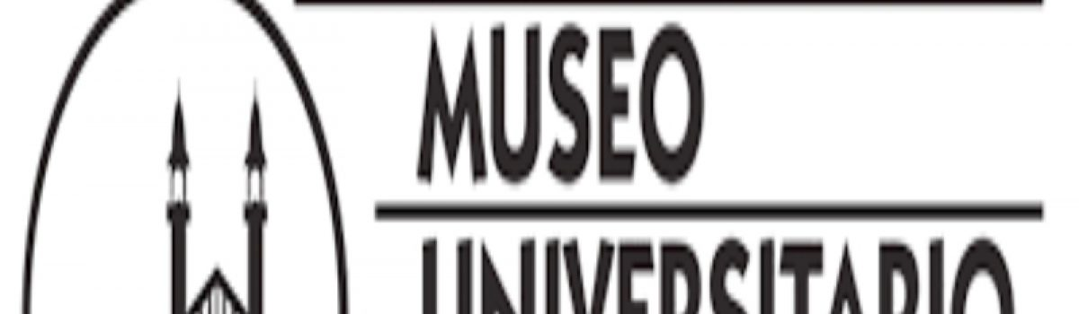 Muestra Lusca Film Festival